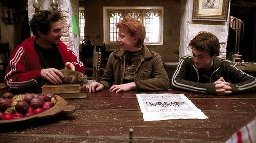 Alfonso Cuarón dice no al spin-off de Harry Potter