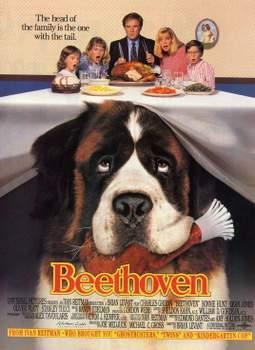 Especial Perros de cine